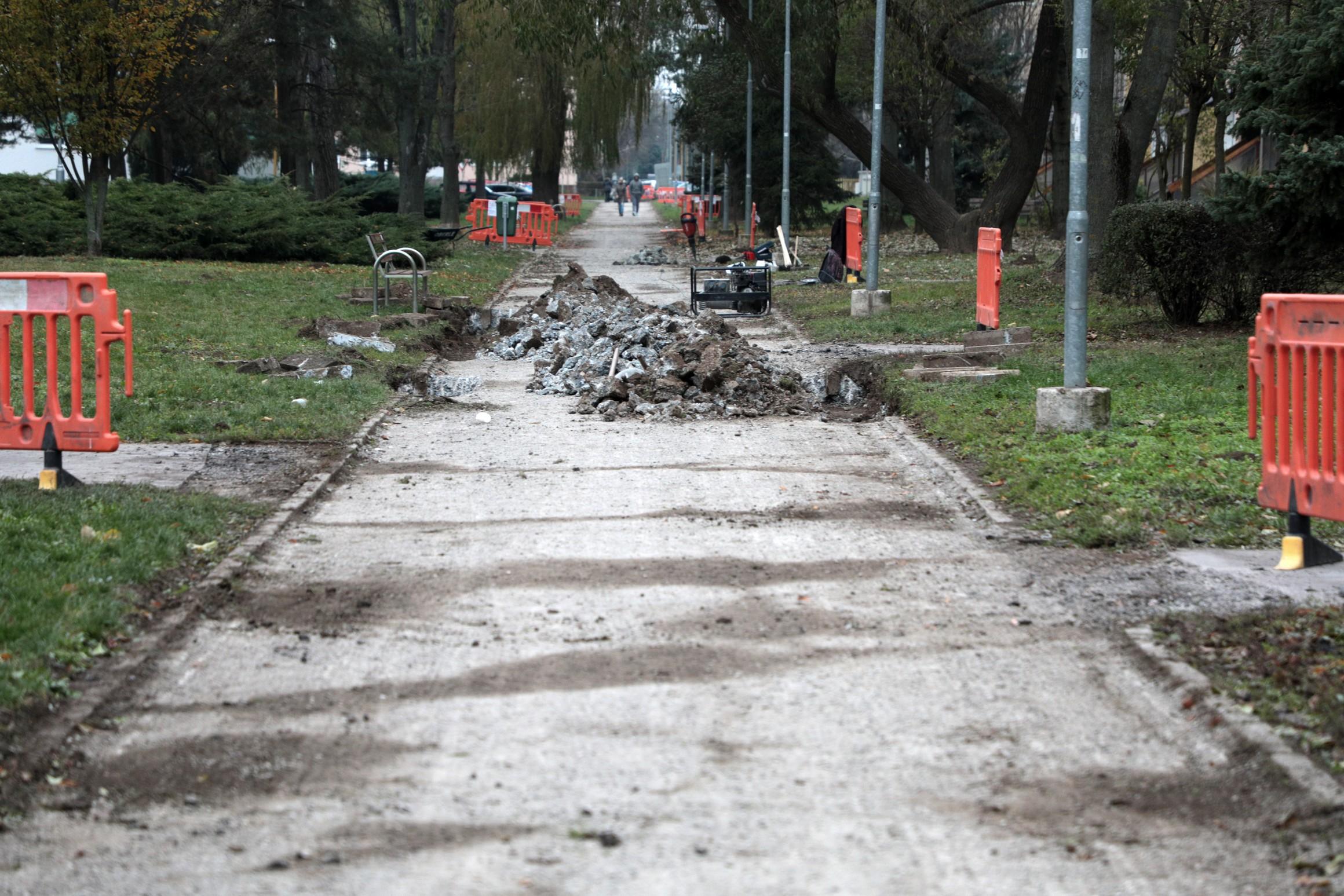 ChodnikyKontrolnyDen2_46
